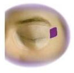 Ögonskydd EyeGard